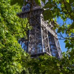 Eiffel through the Trees